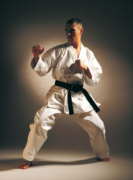 Budo Sport Martial Arts Gear Uk And Ireland Karate